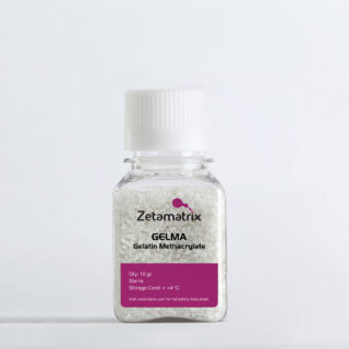 https://www.zetamatrix.com/wp-content/uploads/2021/05/gelma-320x320.jpeg